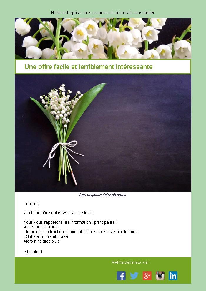 Emailing d'annonce et de promotion avec texte et image
