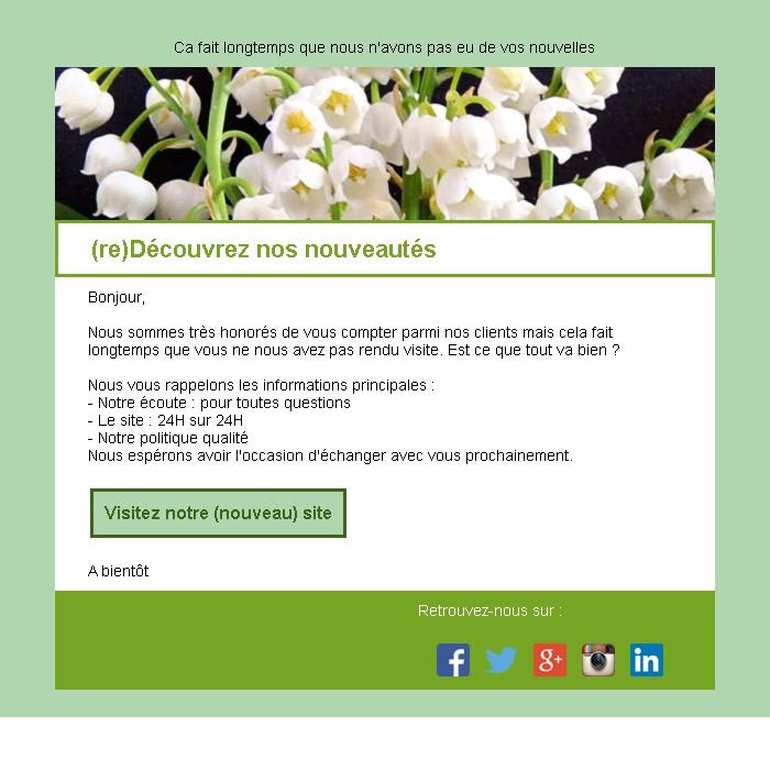 Emailing de relance des inactifs avec un bouton