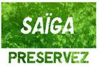 Saïga